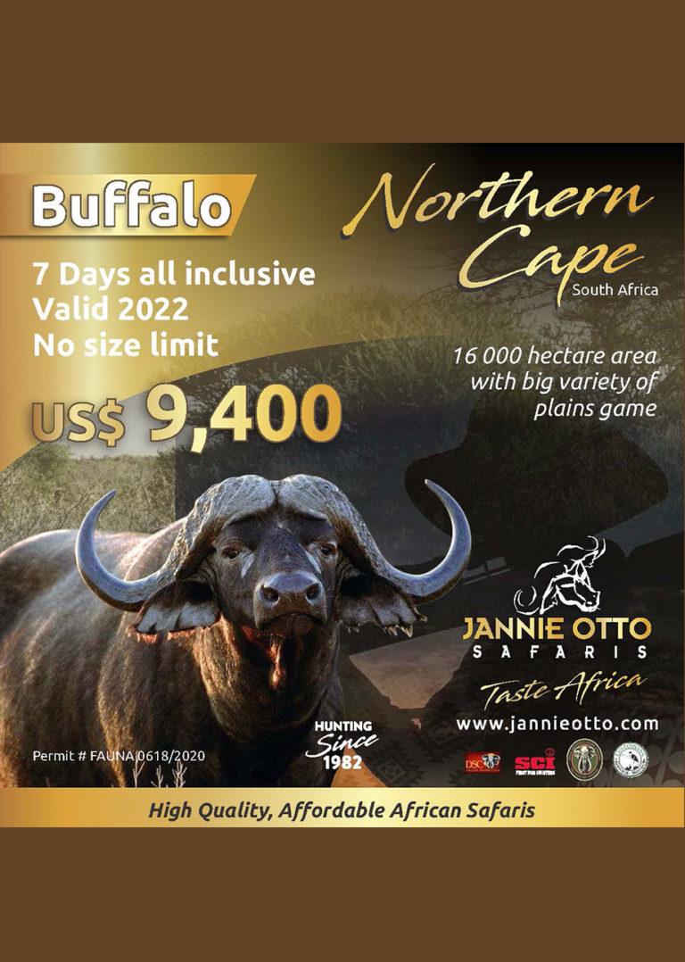 Buffalo Special  2021